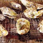 広島で牡蠣の食べ放題!地元がおすすめするお店5選!